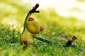 frog-1109792_640
